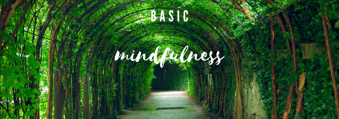 Basic Mindfulness for Stress Resilience