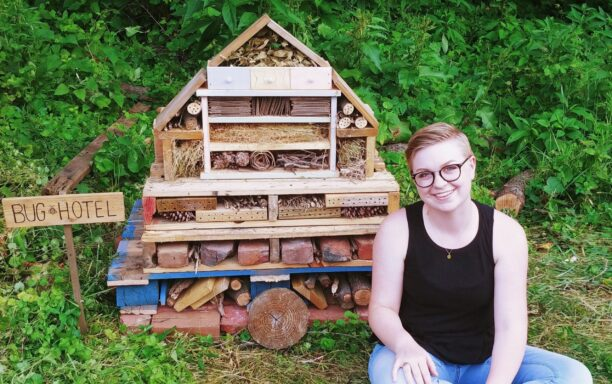 Aspen and bug hotel