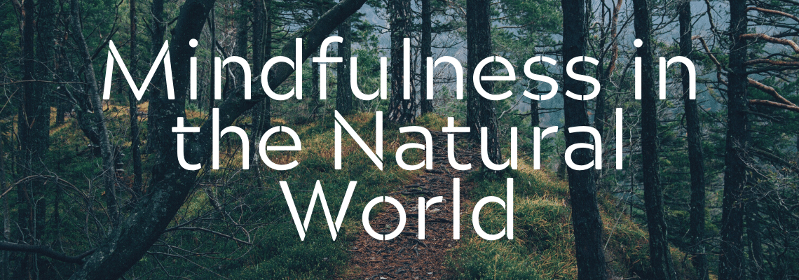 Mindfulness in the Natural World