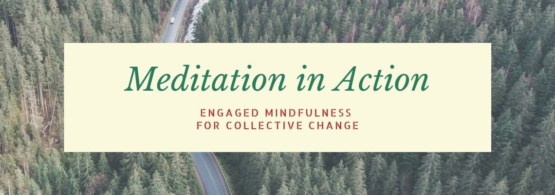 Meditation in Action: Engaged Mindfulness for Collective Change