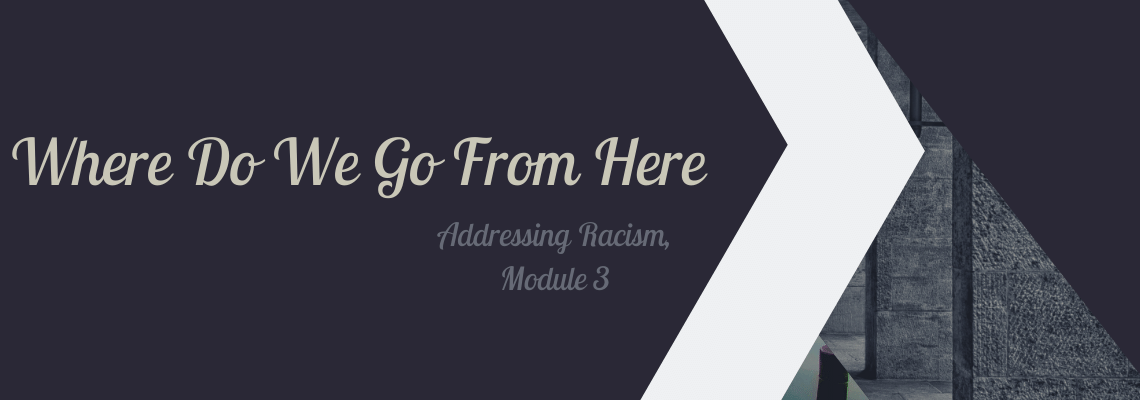 Where Do We Go From Here? – Addressing Racism Series, Module 3